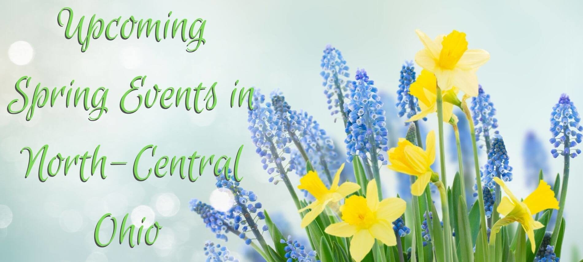Yellow daffodils and Lavender Lilacs on a white background with the words Upcoming Spring Events in North-Central Ohio