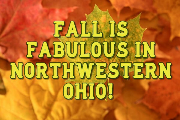 Fall is Fabulous in Northwestern Ohiuo on a background of orange and yellow fall leaves.